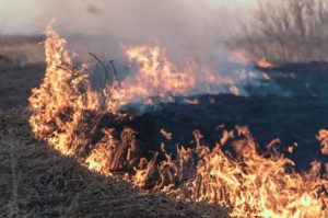 Red Flag Fire Warnings Issued in Southern California